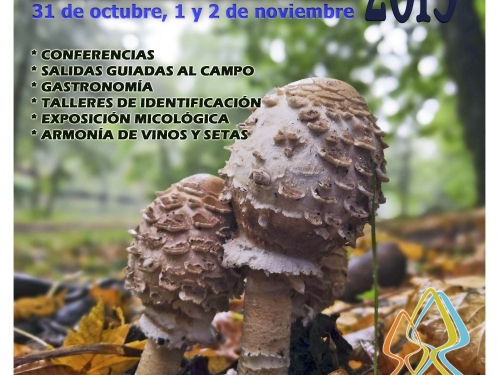 XVI Jornadas Micológicas