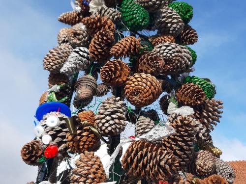 La inauguración de la Navidad. El árbol de piñas y el alumbrado