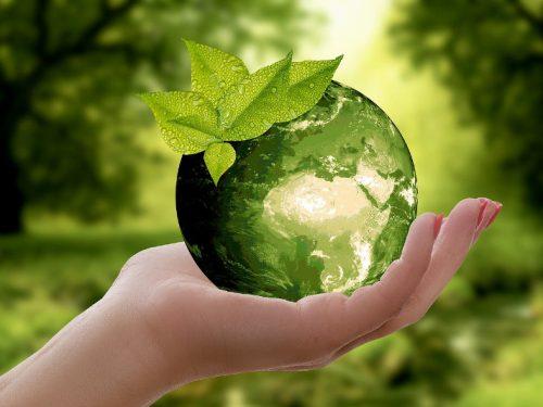 Circuito Taller de Reciclaje - IV Jornadas Medioambientales